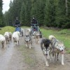 Thüringer Wald Tour